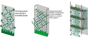 Support For Climbing Plants - green facade plants growing green guide