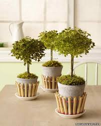 Japanese House Plants by Decorative Flowerpots And Planters Martha Stewart