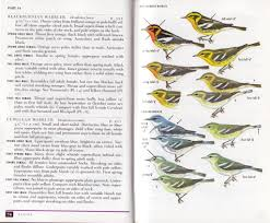 review a field guide to warblers of north america peterson guide