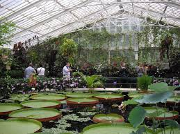 Royal Botanic Gardens Kew by Writing Is A Blessing Sights Of England The Waterlily House