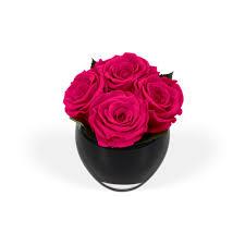 flowers roses onlyroses beverly