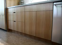 Custom Cabinet Doors For Ikea Cabinets Charming Ikea Cabinets Custom Doors R53 On Home Decor