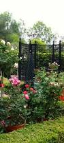 328 best arbors trellises and obelisks images on pinterest