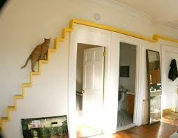 pet room ideas make your pet a part of your life and home a few ideas for how to