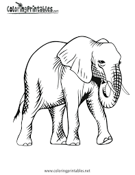 lovetheprimlook2 14 elephant coloring pages kids