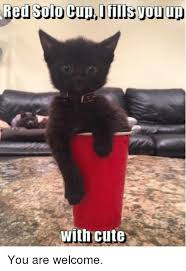 Red Solo Cup Meme - red solo cup fills vou up with cute you are welcome meme on me me