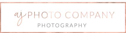 Wedding Photographers Madison Wi Photo Company Wedding Photographer Madison Wisconsin