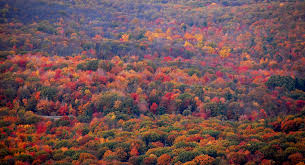 Pennsylvania national parks images Chasing autumn small towns state parks and national forests in jpg
