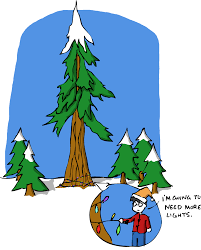 sketchy science sketchy fact 73 tall trees