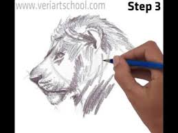 male lion head side view youtube