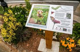 Washington State Botanical Gardens Plants Archives Uga State Botanical Garden