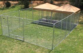 Dog Kennel Flooring Outside by Dog Kennel Play Zone