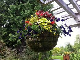 Rock Garden Bellevue by Plant Talk Bellevue Botanical Garden
