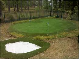 Backyard Golf Green by My Diy Backyard Putting Green Page Photo With Marvellous Diy Golf