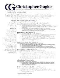 Copywriter Resume Sample by 100 Resume Coach How To Write A Good Professional Resume