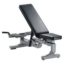 Bench Gym Equipment Commercial Gym Equipment Gym Equipment York Barbell