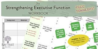 free download the strengthening executive function workbook bay