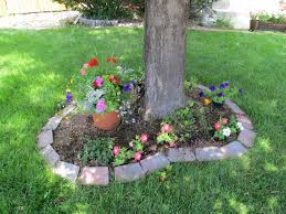 Landscaping Ideas Around Trees Pictures by Planting Flowers Around Tree Base The Best Flowers Ideas