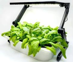 most efficient grow light grow ls for indoor plants the most efficient led grow lights for