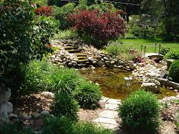 Backyard Pond Landscaping Ideas Our Favorite Diy Gardens From Rate My Space Diy