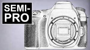 budget low light camera which semi pro camera for wildlife travel street photography