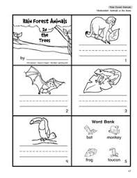 rainforest games and worksheet activities the rainforest