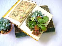 Monogram Planter Diy Succulent Centerpiece Vintage Book Planter For The Book