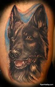 belgian shepherd tattoo german shepherd tattoo in dogs paw tattoos pinterest german