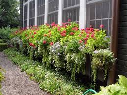 What To Plant In Window Flower Boxes - late summer window boxes from thrifty decor