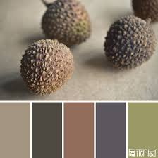 lychee earth tones color my world pinterest earth tones