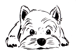 dog face coloring pages paginone biz