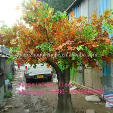 Ornamental Maple Tree Q020205 Large Outdoor Artificial Trees Ornamental Foliage Plants