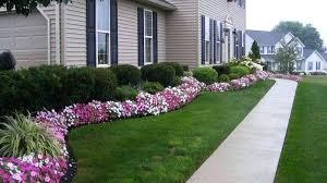 best shrubs for landscaping landscaping shrubs crossword soware club