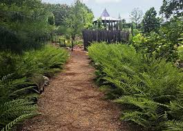 lost hollow daniel stowe botanical garden sitework studios