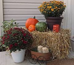 fall corner yard decoration with potted flowers and miniature