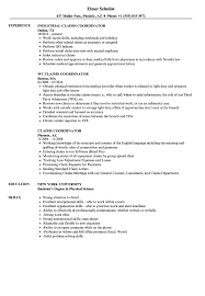 resume format in word file for experienced meaning claims coordinator resume sles velvet jobs