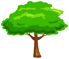 green tree png image gallery yopriceville high quality images