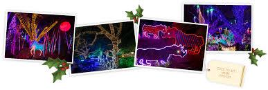 san antonio zoo lights coupon get tickets zoo lights zoo lights