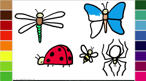learn to draw and color a dragonfly butterfly bee ladybug and