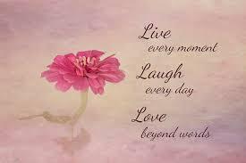 live laugh love live laugh love photograph by kim hojnacki