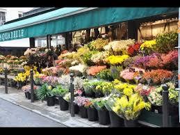 flower store flower shops flower shops near me