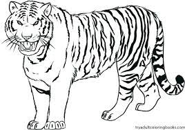 coloring page tigers daniel tiger coloring page tiger coloring page printable tiger