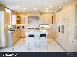 high end kitchens designs modern kitchen design high end appliances stock photo 18916648