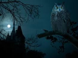 halloween screensaver free 100 halloween owl 41 printable and free halloween templates