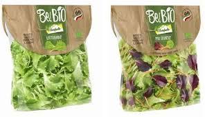 bonduelle si e social be bio nuova gamma di insalate e burger bonduelle green planet