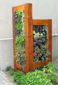 indoor vertical vegetable garden diy 127 best green walls vertical