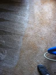 Rug Rakes Carpet Cleaning Upholstery Cleaning Area Rug Cleaning Matress
