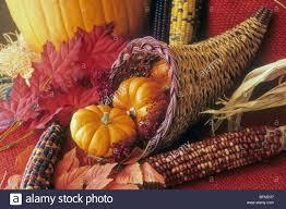 celebration season cornucopia feast plenty thanksgiving still
