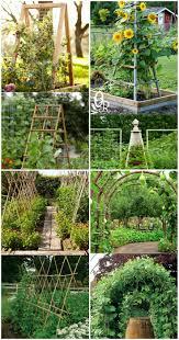20 cheap and easy diy trellis u0026 vertical garden structures diy