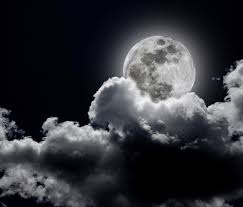 black and white moon image 495658 on favim com